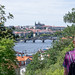 Metal bridge and Prague Castle from Vysehrad