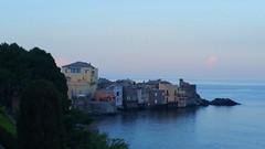 601 - Cap Corse Erbalunga (paspog) Tags: corse corsica capcorse erbalunga france mer sea see mai may 2018