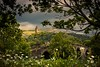 The National Wallace Monument (GenerationX) Tags: abbeycraig barr braveheart canon6d nationalwallacemonument neil ochilhills oldstirlingbridge scotland scottish stirling bridge clouds daisies daisy flowers gothic grass green landmark landscape monument mountains sky trees unitedkingdom gb