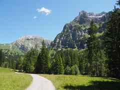 Interlude: Bernese Mountains (M_Strasser) Tags: berneseoberland berneroberland schweiz suisse switzerland svizzera olympus olympusomdem1