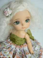 looking down on her (Button Cottage Blythe) Tags: bjd balljointeddoll ball jointed lol cute wig sophie tan lati latiyellow