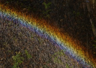 Making Rainbows..x