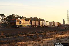 Q4005 7430 freight West Merredin 8 April 2018 (RailWA) Tags: railwa philmelling merredin 2018 q4005 7430 empty sulphur west