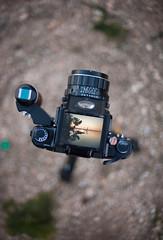 Through the viewfinder (Peter Bruijn) Tags: wlf waistlevelfinder waist level finder pentax pentax67 pentax6x7 67 6x7 mediumformat medium mediumformatfilm d700 nikond700 50mm14