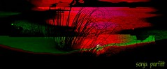 many layers (Sonja Parfitt) Tags: test lagoon beach sun layerd colors bright grasses ship rowers boat