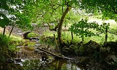 Cray Lower Bridge over Cray Gill (wontolla1 (Septuagenarian)) Tags: upper wharfedale north yorkshire cray buckden bridge gill river water walking walk hiking hike wednesdaywalk