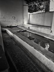 source of emotions (Laura Anzini) Tags: xiaomiremndipro3 mobilephotography source water emotions refletting reflection resilienza colonna fontana fountain iichakra svadhisthana