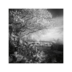 Well trodden (vuzephotography.co.uk) Tags: ir infrared peakdistrict