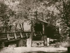 Sugar Creek Covered Bridge (Larry Senalik) Tags: 2018 bw illinois sugar black bridge covered creek phone vintage white county sangamon