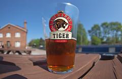 Tiger bitter (nisudapi) Tags: 2016 uk staffordshire beer bitter tiger glass everards leicestershire pub inn swaninn fradleyjunction fradley canal fisheye