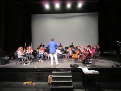 08 orquestra (13)