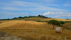 A-LUR_6259 (OrNeSsInA) Tags: trasimeno chiusi etruschi romani impero umbria perugia castiglionedellago toscana arte siena valdorcia