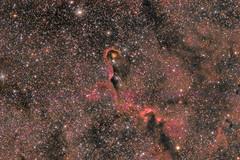The Elephant Trunk Nebula (pete_xl) Tags: ic1396a elephanttrunknebula astrometrydotnet:id=nova2662942 astrometrydotnet:status=solved