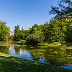 Bruxelles - Parc Leopold thumbnail