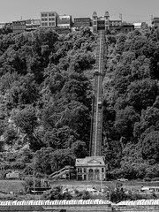 Duquesne Incline (Ed Rosack) Tags: usa building tree inclinerailway car pennsylvania pittsburgh ©edrosack monochrome buildingandarchitecture mountain automobile blackandwhite grayscale