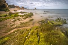 Low tide on the beach (Sizun Eye) Tags: lowtide beach seaweed rocks cliffs landscape threecastelsbeach praiadostrescastelos portimao algarve portugal seascape coast sizuneye nikond750 d750 nikon1424mmf28 nikkor nikon nisifilters nd1000 bigstopper longexposure le poselongue