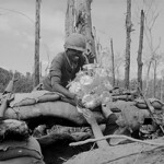 Soldiers Placing Christmas Tree on Bunker in South Vietnam thumbnail