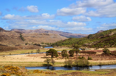 Glen Cannich (maureen bracewell) Tags: glencannich rivercannich scotland clouds highlands landscape mountains reflections river spring sunshine trees highlandsofscotland uk remote secluded quiet nature scenic picturesque countryside maureenbracewell cannon