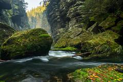 kleine felsen schlucht (Fotodesign Behrend) Tags: river fluss europa steine felsen wasser natur landscape travel reisen tschechien green herbst sony alpha