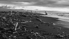 After the storm, Napier, Hawke's Bay, NZ - 13/6/18 (Grumpy Eye) Tags: nikon d7000 nikkor 24mm 14 washed up logs navigation light