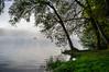 Fishing in the mist (Gijs Rijsdijk) Tags: amazing bourgogne bourgondië burgundy fishermen frankrijk lac lacdessettons lake meer morvan stilte bomen france licht light mist pecheur silence sunsrise tree zonsopkomst