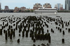 Yacht & Pile Field 2 (Hudson River Park/NYC) (chedpics) Tags: newyork hudsonriverpark aquaazul
