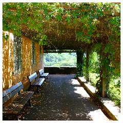 Jardin de Rothenburg (bavière) (mibric) Tags: parc jardin rothenburg allemagne germany feuille banc bench