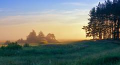 Morning mist at the edge of the forest (tulbanov) Tags: sunlitgh summer fog forest mist meadow ukraine sky sunrise season light canon nature landscape