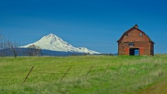 Mt Hood and Barn 7588 B (jim.choate59) Tags: on1pics jchoate mthood mountain barn fence farm rural wascocounty oregon thedalles dufuroregon decay field hff