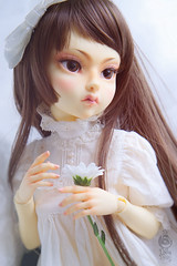 Do Dollls Dream (Muri Muri (Aridea)) Tags: dodollsdream do dolls dream margaret ball jointed doll bjd