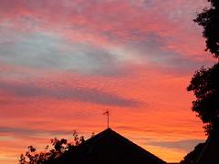 Beauty of the sky (nannyjean35) Tags: house leaves ariel