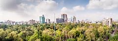 Parque Hundido, Ciudad de México (ruifo) Tags: nikon d700 sigma 20mm f14 dg hsm art mexico city ciudad méxico cdmx df skyline parque hundido insurgentes sur urban landscape cityscape park tree arbol árbol arvore árvore verde green skyscraper skyscrapers clouds nobens nuvens