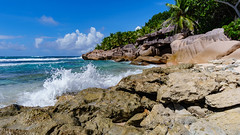 In a lonely place (Migge88) Tags: meer sea wasser water stone steine palmen palm sony alpha 6500 himmel sky woklen clouds wellen wave holiday urlaub seychellen seychelles la digue granit blau blue green grün