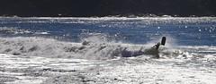 Go for it ! (alestaleiro) Tags: bodyboard surf splash onda ola wave mar ocean sea action