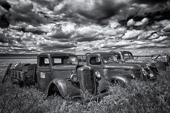 Three's Company (D E Pabst Photography) Tags: ford asotincounty rusted abandoned blackandwhite monochrome automotive classic truck anatone washington farm rural agriculture international neglected
