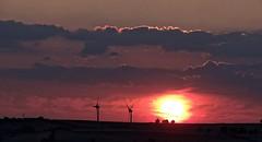 [NT] Alport Heights. Panoramic Sunset. July 2018 (SimonHX100v) Tags: thenationaltrust nationaltrustuk nationaltrust ntmidlands ntchallenge nationaltrustmembers nationaltrustmember derbyshire peakdistrict peakdistrictnationalpark thepeakdistrict alportheight alportheights ambervalley sunset sundown sun sunrays sunshine landscape landscapephotography countryside windturbines silhouette