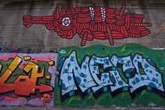 IMGP5503 Graffito on the railway wall (Claudio e Lucia Images around the world) Tags: viaplezzo lambrate milano murale murales graffito graffiti street streetart muro wall ferrovia railway pentax pentaxk3ii sigma sigma1020 pentaxart sigmaart city urban lotta