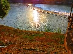 il cancello sul fiume (archgionni) Tags: fiume po torino piemonte italia acqua water riflessi reflections erba grass cancello gate rive bancks