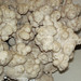 Calcite (Cave-in-Rock Mining District, Illinois, USA) 3