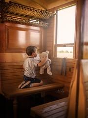 Vintage Steam Train (agirygula) Tags: teddy boy boywithteddy storytelling steamtrain vintage historic childhood windowlight childrenphotography fineart emotions memories adventure
