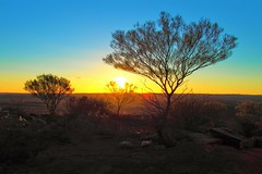 Desert at Dusk, Broken Hill, New South Wales, Australia (Red Nomad OZ) Tags: brokenhill sunset tree dusk australia newsouthwales nsw desert outback livingdesert caviardreams landscape