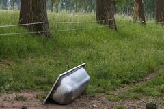 Freibad (dorothea knie) Tags: nrw dormagen rost rust badewanne bathtub wiese meadow grün green