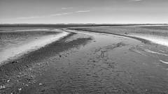 curve on the beach (robvanderwaal) Tags: 2018 netherlands nature water nederland kwadehoek zee sea robvanderwaalphotographycom beach natuur monochrome strand bw zand mono blackandwhite zwartwit zw seascape slijkgat landscape landschap sand northsea noordzee