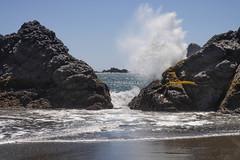 Harris Beach State Park-4392.jpg (marvhimmel) Tags: breakers oregoncoast general surf ocean rock wave sea