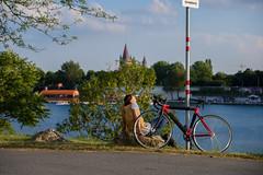 Soaking in every second of summer (FlorianMilz) Tags: wien austria at bike bicycle break pause summer sun sunrays evening light danube donau radweg trail enjoy vienna