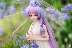 Day Outing (帝王赤) Tags: shanghai botanical garden green heero doll dollfie dream dd bjd action figure jfigure bfigure japanese toy macross mikumo nikon animate