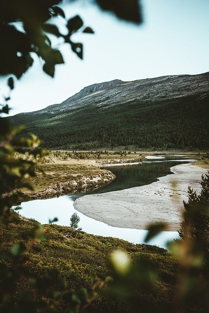 Norwegian river valley