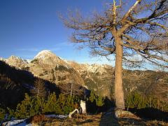 On Krstenica (Vid Pogacnik) Tags: slovenija slovenia julianalps bohinjgroup outdoors hiking landscape mountain winter tosc krstenica