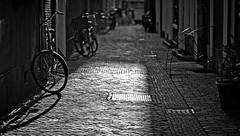 Prinsenhofsteeg (bert • bakker) Tags: prinsenhofsteeg amsterdam oudezijdsachterburgwal thenetherlands nederland fiets schaduw klinkers steeg alley stones shadow sunlight blackwhite nikon85mm18g