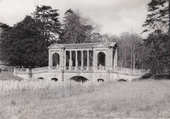 Palladian Bridge Stowe Buckinghamshire 1956 (Bury Gardener) Tags: bw blackandwhite oldies old snaps scans 1950s england uk britain 1956 landscape bridge lake